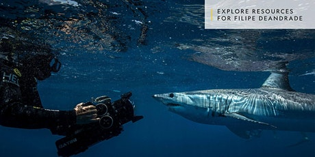 Filming Sharks with Filipe DeAndrade and Sharks 4 Kids tickets