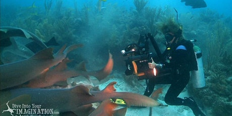 Filming Marine Life with Annie Crawley and Sharks 4 Kids tickets