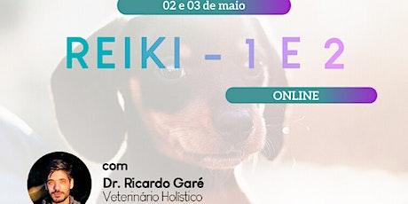 Online - Reiki Nível 1 e 2 - 02 e 03 de maio ingressos