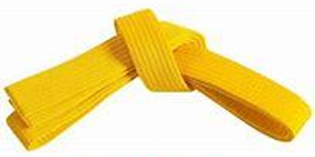 Lean Six Sigma Yellow Belt Online Training + Certification (Malaysia) tickets