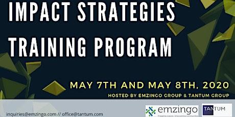 Impact Strategies Training Program (Remote training) tickets