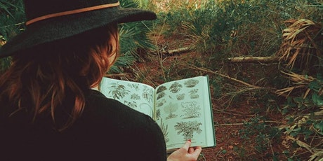 Wild Botany 101 with Taylor Roman [ONLINE] tickets