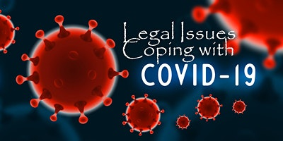 Some Legal Issues when Coping with the COVID-19 Crisis