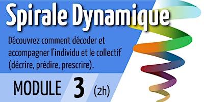 Spirale Dynamique – Module 3