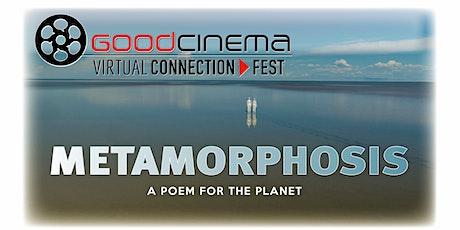 Virtual Connection Fest: METAMORPHOSIS tickets