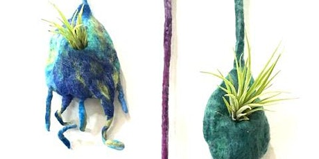 3D Felted Air Plant Pods Workshop tickets