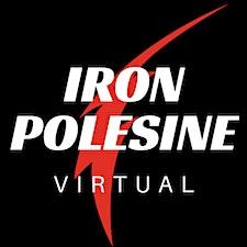 info@ironpolesine.it logo