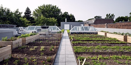 Growing Food in the City - Summer Workshop tickets