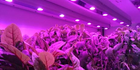 Co-Creation Workshop on Intelligent Lighting - Agri & food tickets