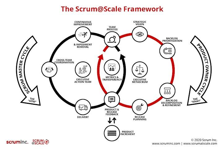 Scrum@Scale® Practitioner image