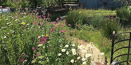 Bloom Time, our garden sanctuaries - webinar tickets