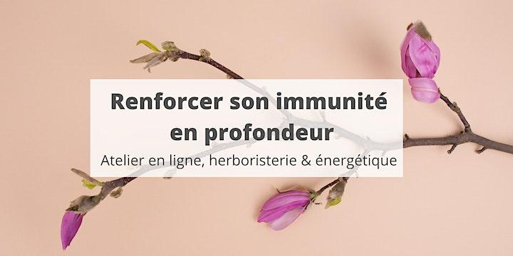Image pour Renforcer son immunité en profondeur - cours en ligne