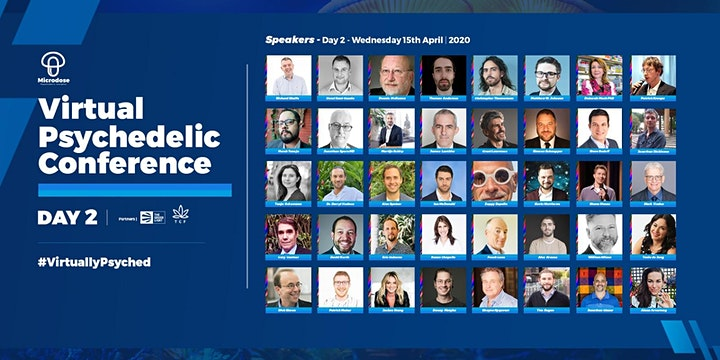 Virtual Psychedelics Conference image