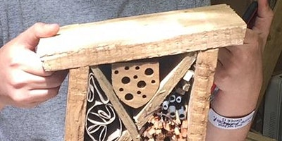 Kids+-+make+an+insect+house%2C+age+8%2B
