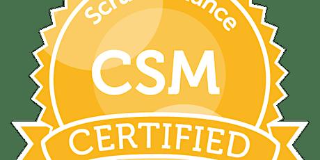 Certified ScrumMaster (CSM), Virtual-Online 22 June - 26 June 2020  tickets