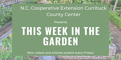 This Week in the Garden tickets