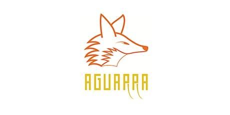 Agile Management Teams - Workshop (MATE) tickets