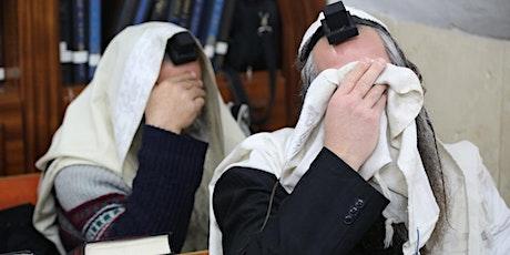 Curso Virtual: Origen de la Tefilá - ¿Cómo reza el pueblo judío? entradas