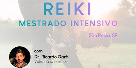 Online - Mestrado INTENSIVO em Reiki (NÍVEL 3B), Sistema Tradicional Usui. Conteúdo em animais e pessoas. ingressos