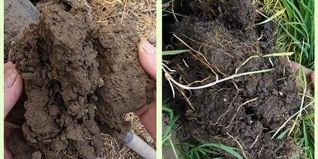 Online - Soil Health on Arable Operations - Part 1: Understanding tickets