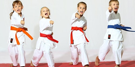 Pintsize Karate Live Online Class for Kids tickets