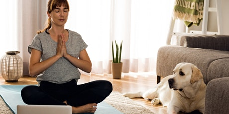 Virtual Yoga Class: Bright Drop Yoga at Home Tickets