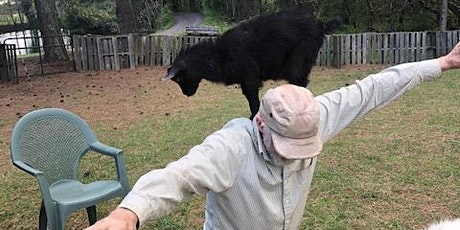 Goat and Alpaca Yoga in Culpeper at Spring Haven Farm tickets