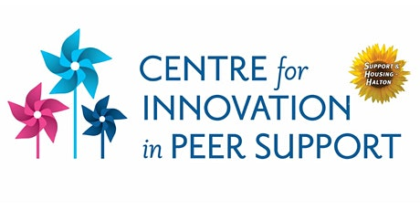 Peer Support Integrity, Quality and Impact Survey