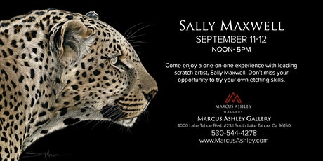 Sally Maxwell ~Meet the Artist~ September 11th & 12th, 12-5pm tickets