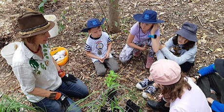 Outdoor Learning and the Curriculum: A  Webinar for Educators tickets