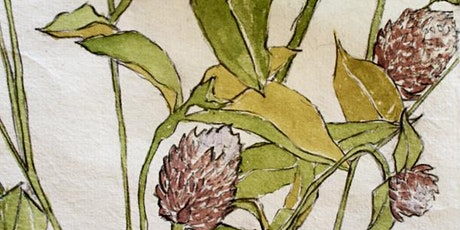 Summer 2020 – Drawing Botanicals Intensive (Online Intensive) tickets