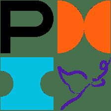 PMI Puebla chapter logo