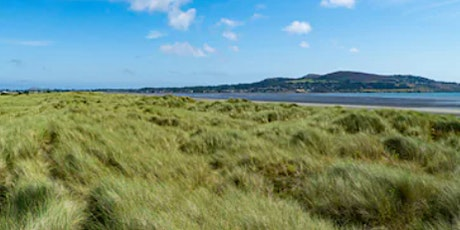 Invasive Species Removal  at North Bull Island Nature Reserve, Dublin 5 tickets
