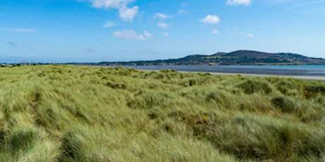5 islands in Dublin   The 500 Hidden Secrets