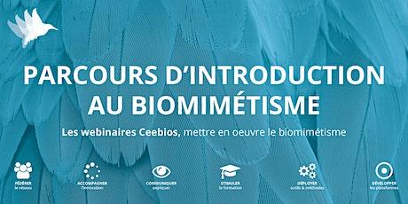 Introduction au Biomimétisme - Cycle 2 billets