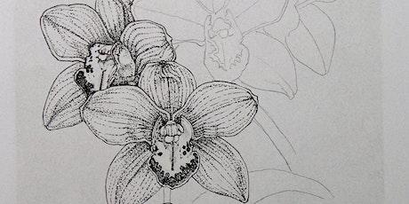 Atelier+ Botanische tekenen tickets