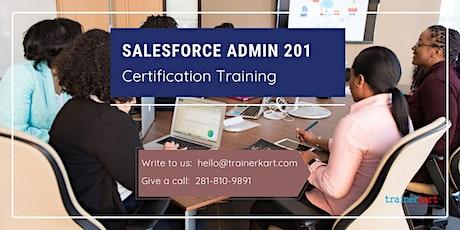 Salesforce Admin 201 4 day online classroom Training  in Salt Lake City, UT billets