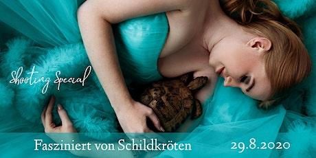 """Shooting Special """"Fasziniert von Schildkröten"""" Tickets"""