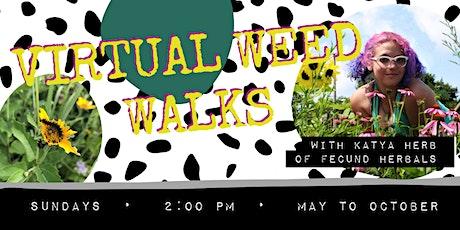 Virtual Weed Walks with Katya Herb of Fecund Herbals tickets