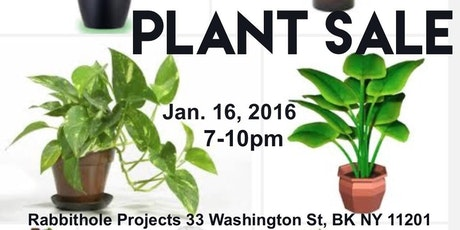 Plant Sale: a group show exploring the common house plant