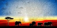 Africa Innovate DC Series 1 : Addis Ideas